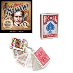 frozen 40 cartes jeux de carte